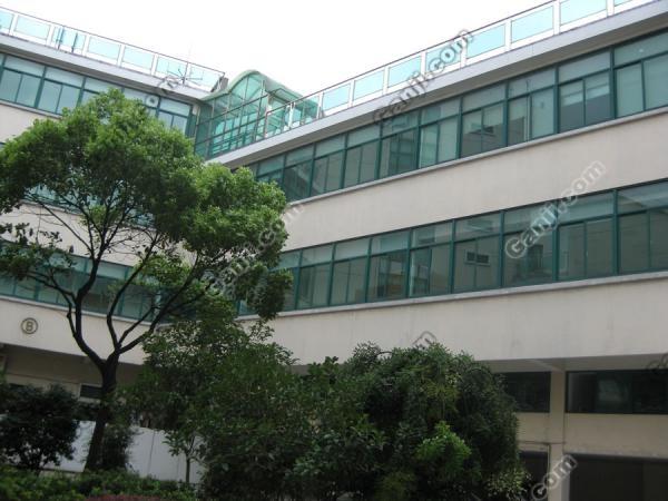 天山西路100-1800平米精装修办公楼低价出租